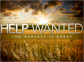 Jesus calls for workers. The harvest is still great, and the laborers are still few. Are you willing to serve him? Will you be a laborer for the Lord?